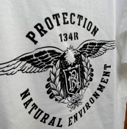 画像2: 134R T-Shirts Eagle T White